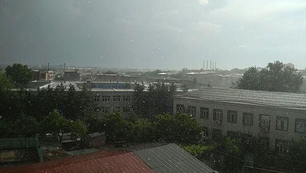 Слепой дождь прошел над знойным Ташкентом - Sputnik Узбекистан