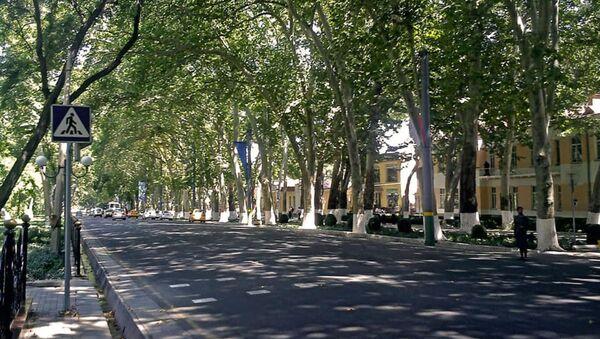 Universitetskiy (raneye — Abramovskiy) bulvar v Samarkande - Sputnik Oʻzbekiston