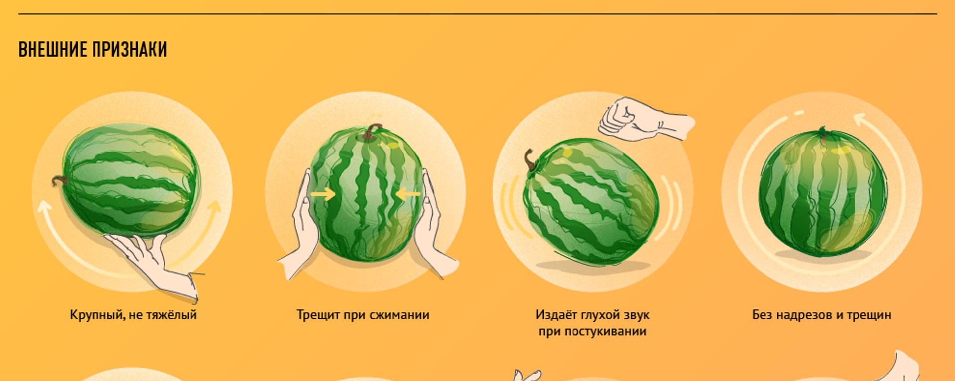 Как выбрать самый вкусный арбуз - Sputnik Узбекистан, 1920, 22.07.2019