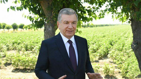 Шавкат Мирзиёев в ходе поездки в Самаркандскую область посетил фермерское хозяйство Pure milk Oqdaryo в Акдарьинском районе - Sputnik Ўзбекистон