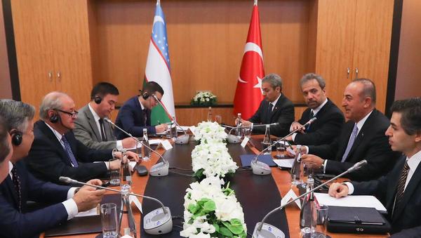 Главы МИД Узбекистана и Турции встретились в Анкаре - Sputnik Узбекистан