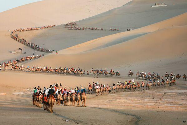 Туристы на верблюдах в пустыне в Дуньхуане, Китай - Sputnik Узбекистан