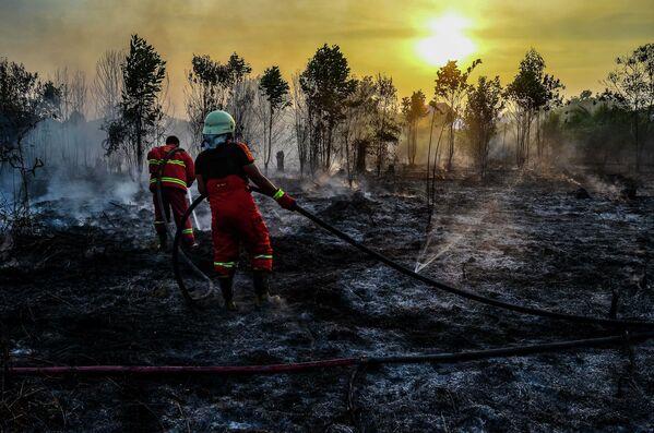 Тушение лесных пожаров на Суматре, Индонезия - Sputnik Узбекистан
