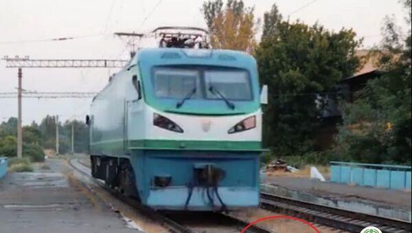 Под поезд ради хайпа: как накажут ташкентского блогера - Sputnik Ўзбекистон