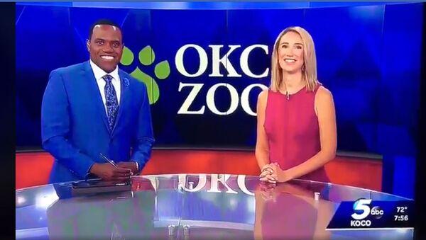 Телеведущая американского канала KOCO 5 News Алекс Хаусден сравенила своего коллегу Джейсона Хэкетта с гориллой в прямом эфире  - Sputnik Ўзбекистон