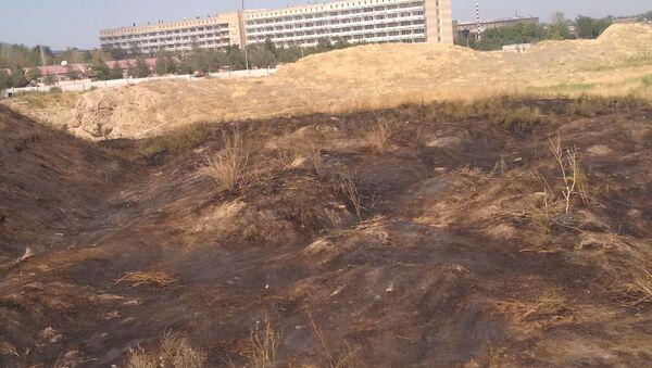 В Самарканде и Карши произошли пожары после праздничных салютов - Sputnik Ўзбекистон