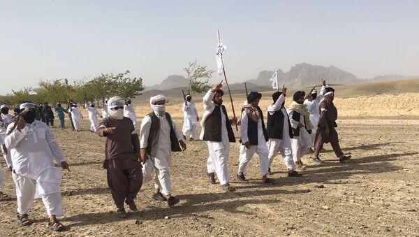 Члены террористического движения Талибан в Афганистане - Sputnik Ўзбекистон