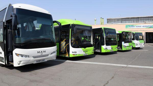 Boleye 1000 avtobusov - Sputnik Oʻzbekiston