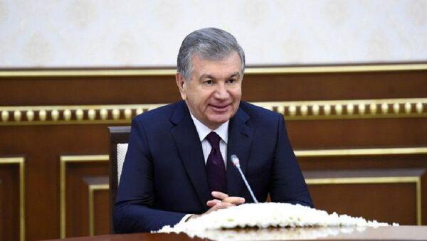 Prezident Uzbekistana prinyal spetsdokladchika Soveta po pravam cheloveka OON - Sputnik Oʻzbekiston