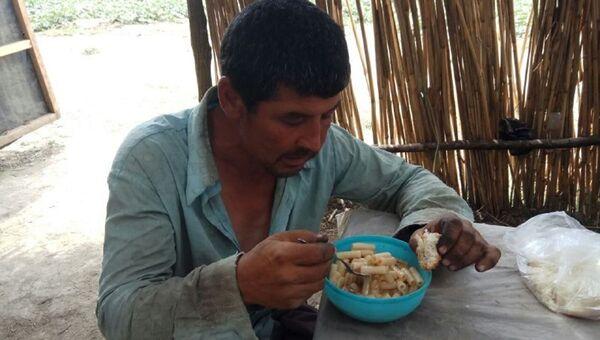В Ставропольском крае семерых узбекистанцев спасли от рабства - Sputnik Узбекистан