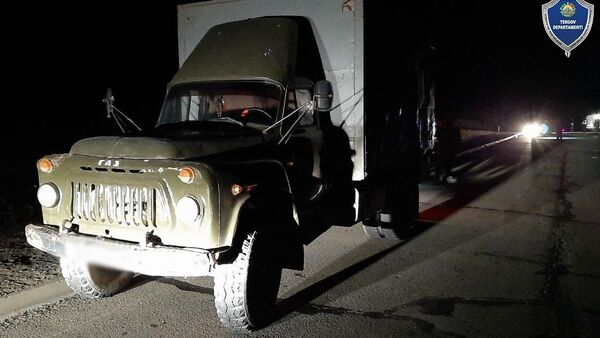 В Каракалпакстане в результате наезда грузового автомобиля погибли два пешехода. - Sputnik Ўзбекистон