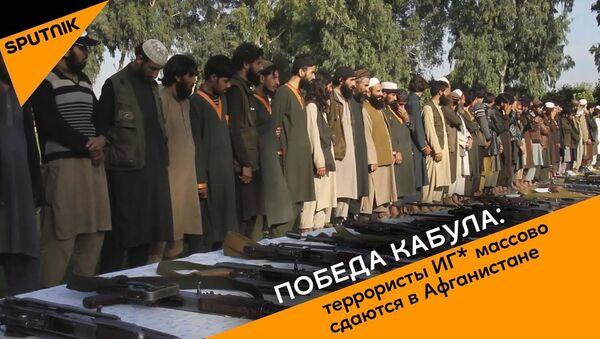 Победа Кабула: террористы ИГ* массово сдаются в Афганистане - Sputnik Узбекистан