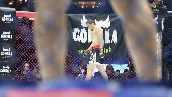 Умар Нурмагомедов на ринге в Ташкенте перед своим соперником - Sputnik Узбекистан
