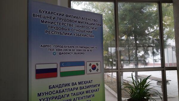 Агентство внешней трудовой миграции - Sputnik Ўзбекистон