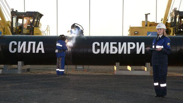 Рабочая поездка В.Путина в Дальневосточный федеральный округ - Sputnik Узбекистан