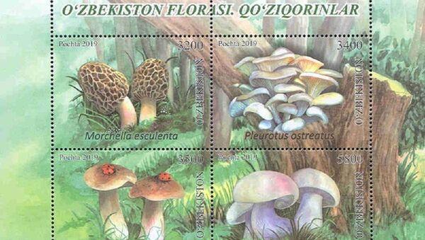 Флора Узбекистана: вышли в свет новые почтовые марки с грибами - Sputnik Узбекистан