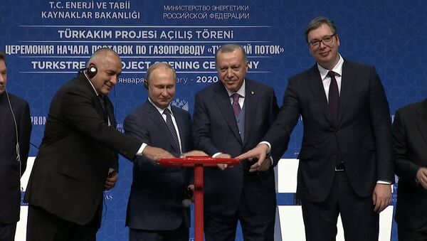 Президенты России и Турции дали старт Турецкому потоку - Sputnik Ўзбекистон