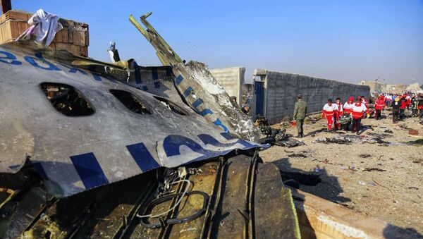 Украинский пассажирский самолет потерпел крушение в Иране - Sputnik Узбекистан
