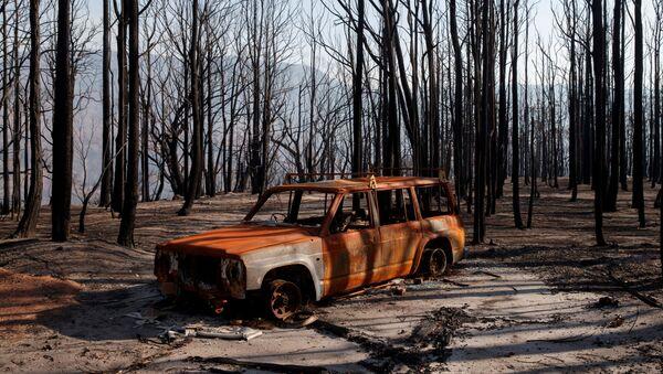 Сгоревшая машина в Долине Кенгуру в Австралии после лесных пожаров - Sputnik Узбекистан