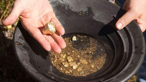 Добыча золота - Sputnik Узбекистан