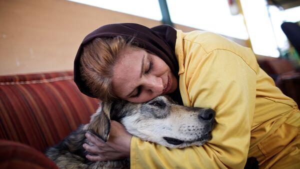 Собака из приюта - Sputnik Узбекистан