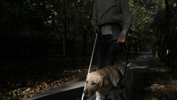 Собака-поводырь - Sputnik Узбекистан