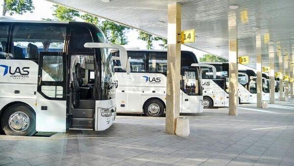 Регулярное автобусное сообщение будет запущено по маршруту Ташкент-Омск - Sputnik Ўзбекистон