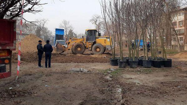 Высадка деревьев в парке  - Sputnik Ўзбекистон