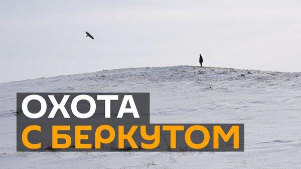 Охота с беркутом на лису в Нур-Султане - Sputnik Ўзбекистон