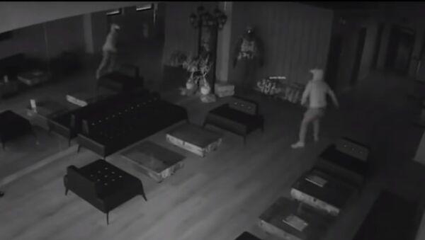 Thief breaks in gun range but is scared off by his own reflection - Sputnik Узбекистан