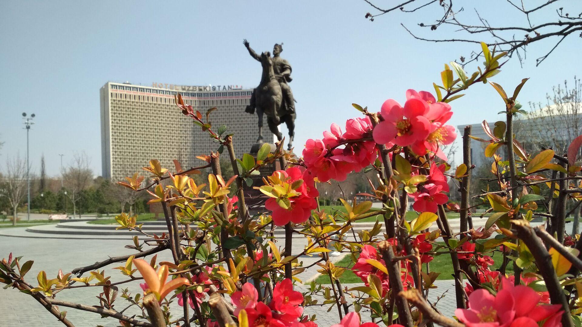 Весна в Ташкенте - Sputnik Узбекистан, 1920, 13.09.2021
