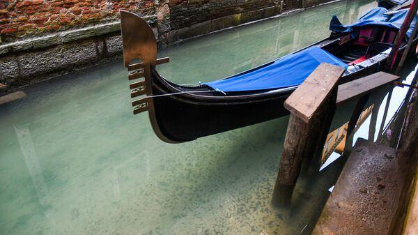 Очистишаяся вода в канале Венеции на фоне туристического кризиса из-за коронавируса - Sputnik Узбекистан