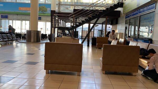 Граждане Республики Узбекистан в аэропортах г. Москвы - Sputnik Ўзбекистон