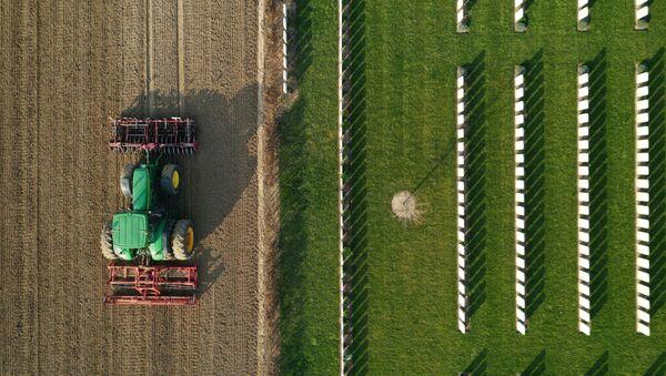 Фермер подготавливает землю к посеву сахарной свеклы во Франции - Sputnik Ўзбекистон