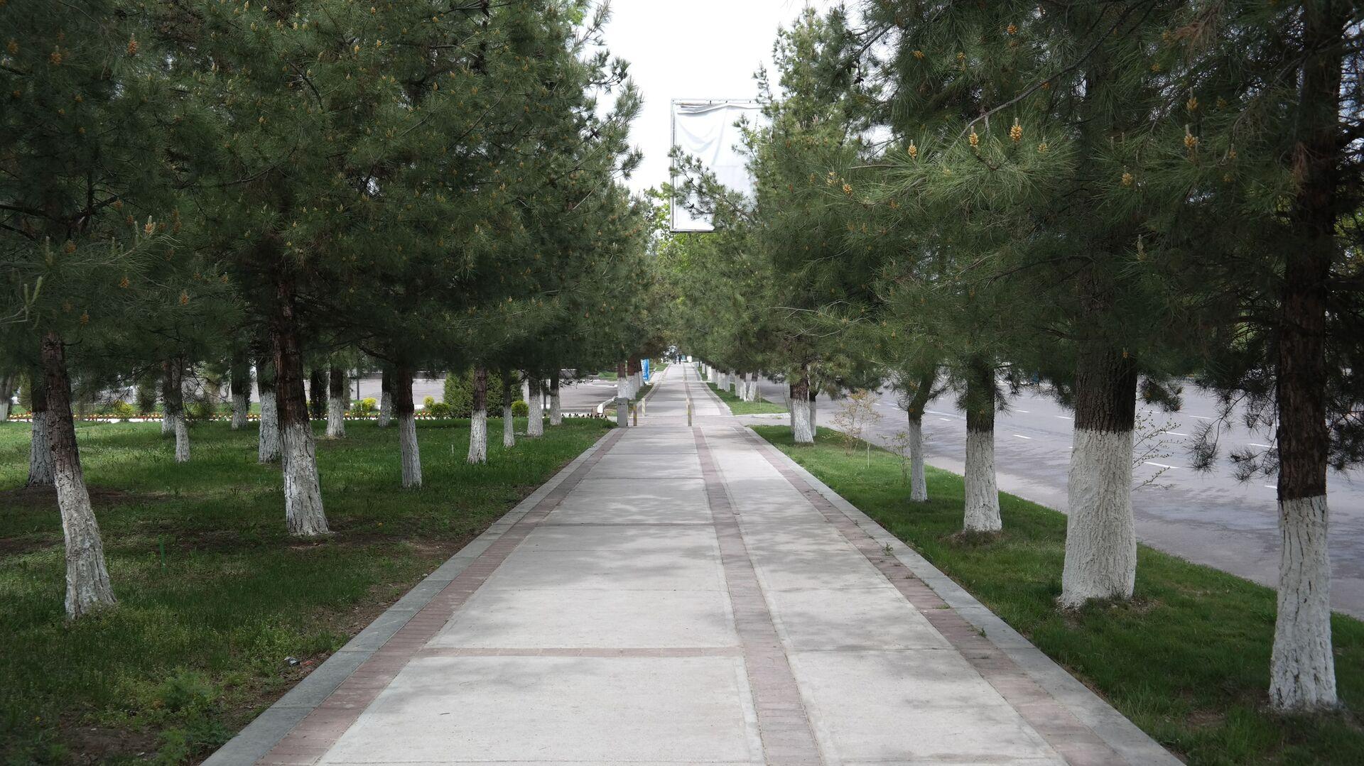 Пустые улицы Ташкента  - Sputnik Узбекистан, 1920, 21.07.2021