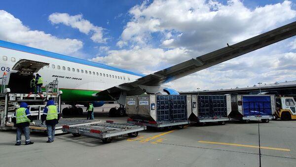 Третья партия гуманитарной помощи Узбекистана России прибыла в аэропорт Внуково - Sputnik Узбекистан