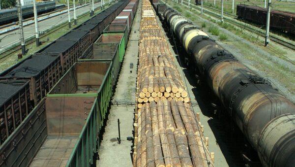 Грузовые составы на участке железной дороги - Sputnik Узбекистан
