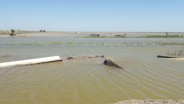 На месте прорыва Сардобинского водохранилища в Сырдарьинской области - Sputnik Узбекистан