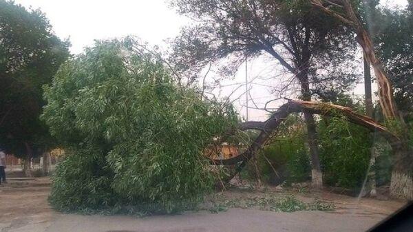 Сильный ветер снес крыши зданий в Хорезме - фото - Sputnik Узбекистан