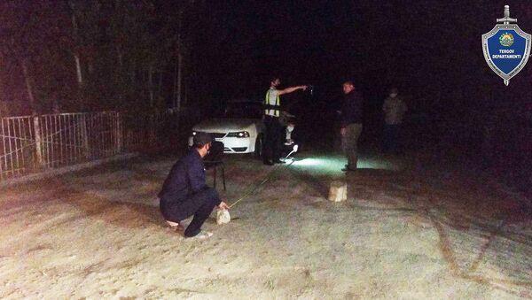 Водитель сбил насмерть пожилую женщину в Кашкадарье - Sputnik Узбекистан