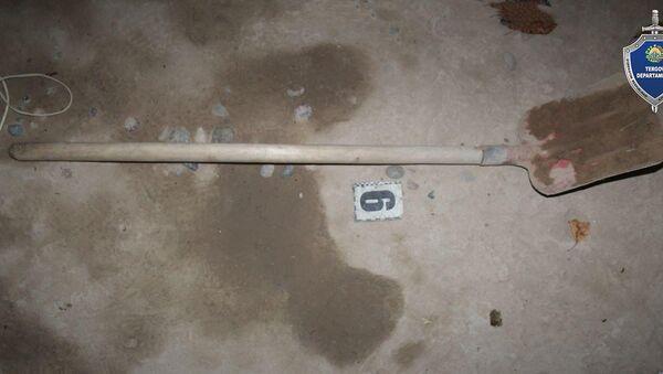 В Ташкентской области молодой человек убил оппонента лопатой - Sputnik Ўзбекистон
