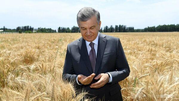 Шавкат Мирзиёев начал рабочую поездку в Фергану - Sputnik Узбекистан