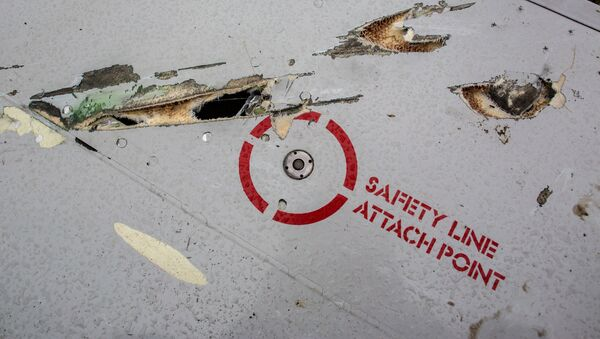 Vozmojnыe povrejdeniya ot aviatsionnoy pushki ili oskolkov raketы na krыle Boeing 777 - Sputnik Oʻzbekiston