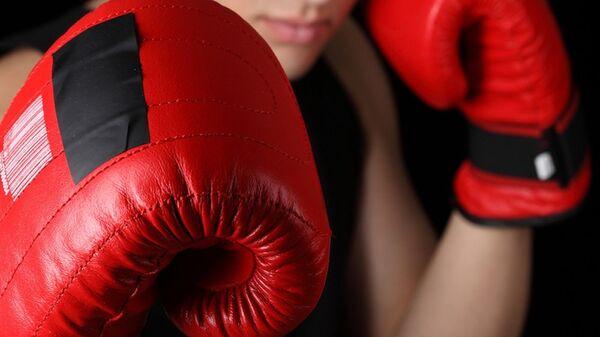 Бокс, боксерские перчатки - Sputnik Ўзбекистон