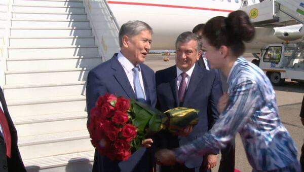 Qirgʻiziston prezidenti Almazbek Atambayevni gullar bilan qarshi olishdi - Sputnik Oʻzbekiston