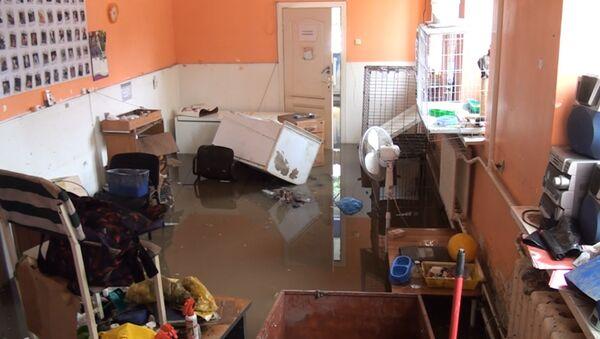 Ростов пережил конец света: последствия наводнения - Sputnik Узбекистан