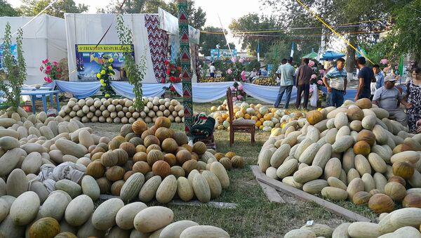 Festival dыn i meda v Buxare - Sputnik Oʻzbekiston