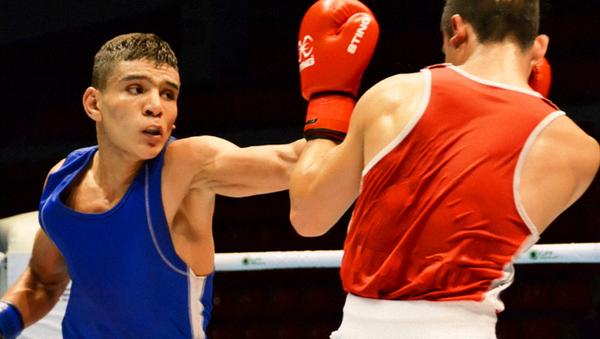 Oʻzbekistonlik bokserlar - Sputnik Oʻzbekiston