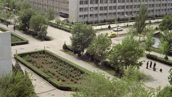 Город Гулистан - Sputnik Узбекистан