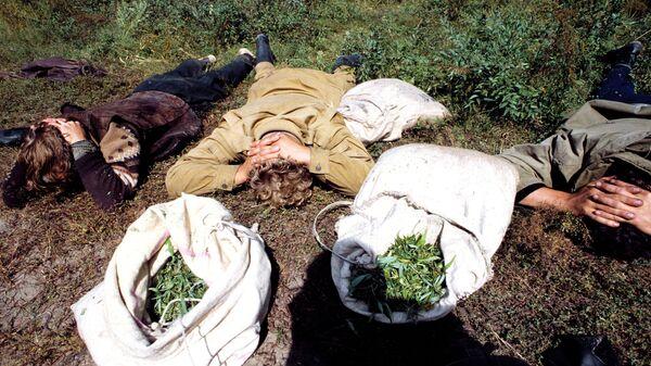 Задержание сборщиков конопли - Sputnik Узбекистан